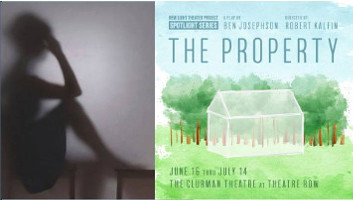 The Property poster image